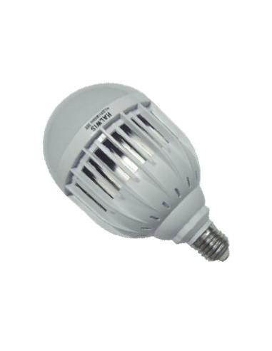AMPOULE LED - 1