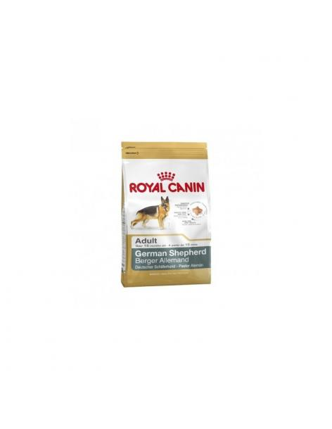 Croquettes Royal Canin BERGER ALLEMAND Adult 12KG - 1