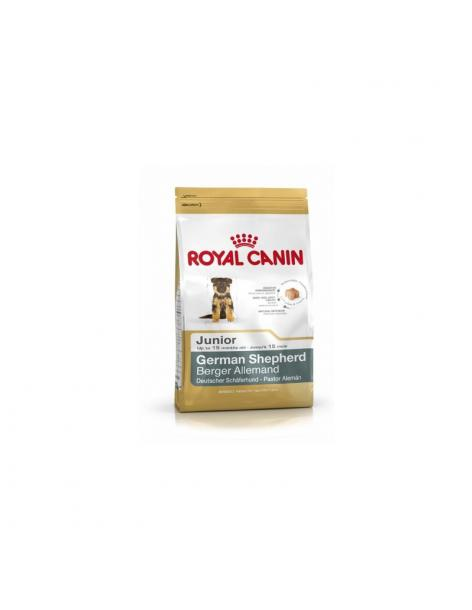 Croquettes Royal Canin BERGER ALLEMAND JUNIOR 12KG - 1