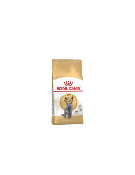 BRITISH SHORT HAIR 2KG ROYAL CANIN - 1