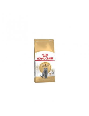 BRITISH SHORT HAIR 2KG ROYAL CANIN