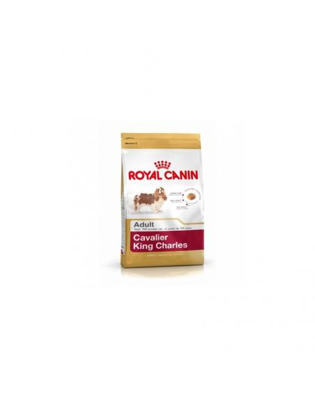 Aliment CAVALIER KING CHARLES 1.5KG ROYAL CANIN