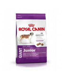 CROQUETTE ROYAL CANIN GIANT JUNIOR 15KG