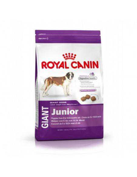 CROQUETTE ROYAL CANIN GIANT JUNIOR 15KG